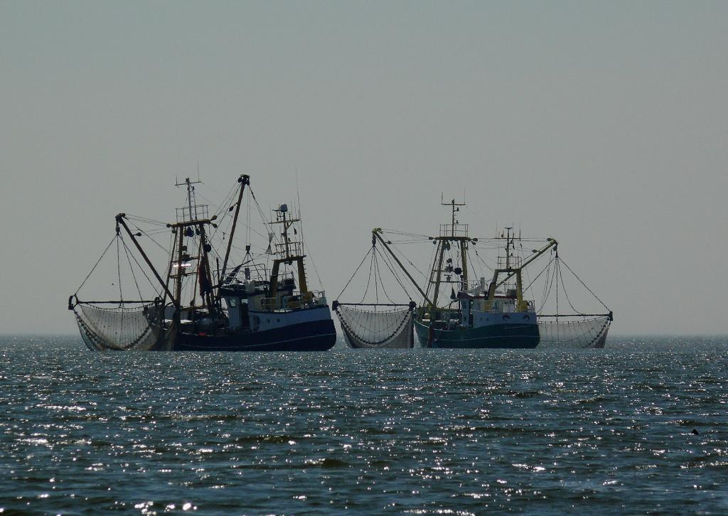 boats-1039093_1920.jpg
